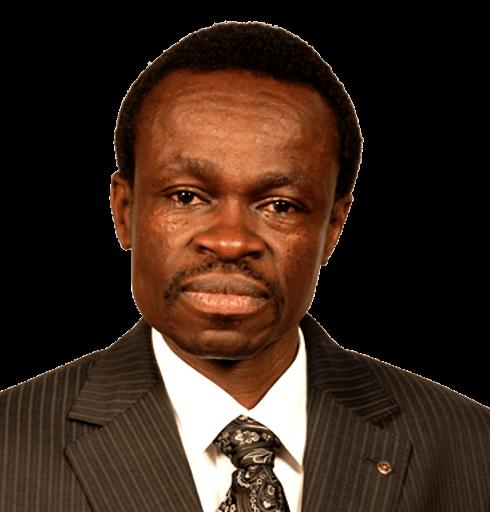 Professor PLO Lumumba